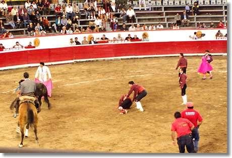 Stierkampf Stier Gewinnt